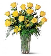 7737a_dozen-yellow-roses