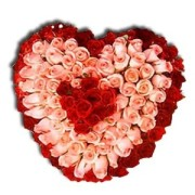 red n pink heart