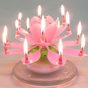 Flower_Candle_Pink